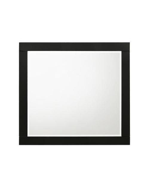 Chelsie Mirror