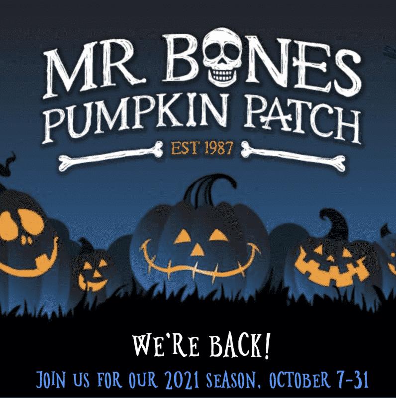 Mr bones pumpkin patch Los Angeles